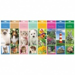 Slim Calendar: Puppies,Dogs,Kittens,Cats,Flowers
