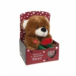9 Record A Message Love Bear in Gift Box