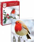 12 Square Cards - Photographic Robins   (FRBO)