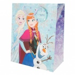 DISNEY FROZEN LARGE BAG