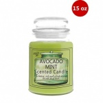 15oz Avocado Mint Scented Candle