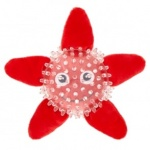 ARMITAGE GB BOBBLE STARFISH