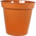 WHITEFURZE 25CM 10IN POT TERRACOTTA