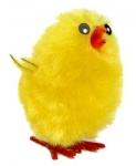 LargeEaster Chicks