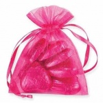 10 Organza Pull String Bags