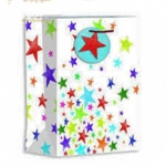 ED BAGS, BRIGHT STARS - LRG, PK OF 6