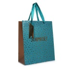 ED GIFT BAGS, GOLD A TEAL TEXT MEDIUM (YAJGB24M) PACK 6